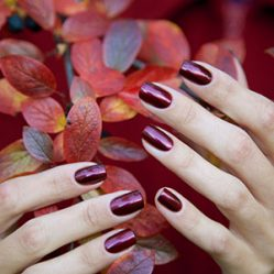 octagon_hair_salon_fall_nail_manicure_pedicure